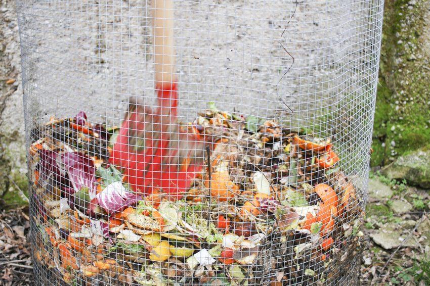 compost_1_Exp